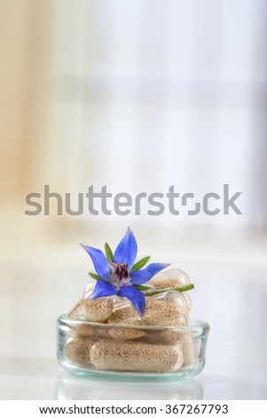 Herbal suplement  with borage flower   - stock photo