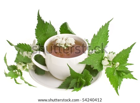 Herbal tea with flowers nettle on white background - stock photo