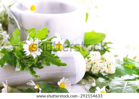 Herbs and flowers with mortar, on light background - stock photo