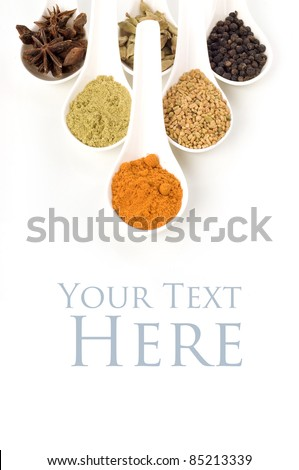Herbs and spices in white spoon isolated white background - stock photo