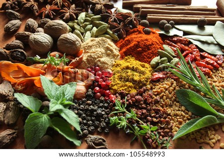 Herbs and spices selection. Aromatic ingredients and natural food additives. - stock photo