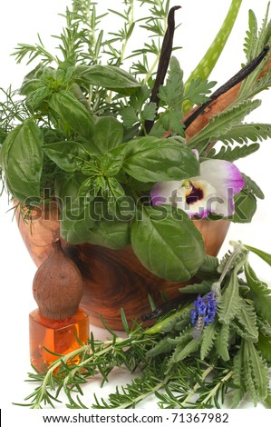 Herbs for alternative therapy and  aromatherapy with massage oil - stock photo