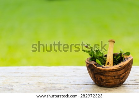 Herbs - Fresh herbs in a mortar - stock photo