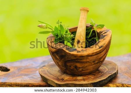 Herbs - Fresh herbs in a mortar - stock photo