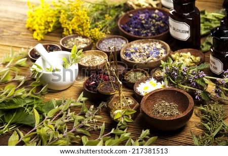 Herbs medicine  - stock photo