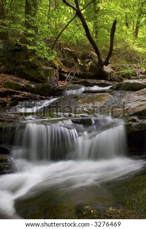 Herring Run - Susquehanna State Park, Maryland - stock photo