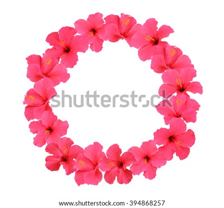 Hibiscus flower wreath isolated on white background  - stock photo