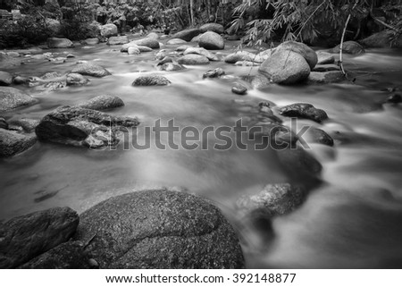 Hidden rain forest stream with lush foliage and mossy rocks. Nature composition,soft focus, grainy effect and vibrant colours.  - stock photo