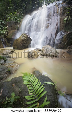 Hidden rain forest waterfall with lush foliage and mossy rocks - stock photo