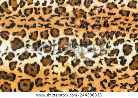 Hide of leopard pattern for background and texture - stock photo