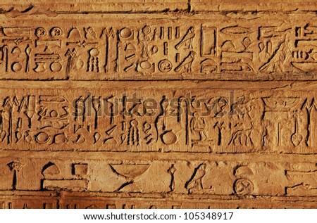 Egyptian bird hieroglyphics - photo#10