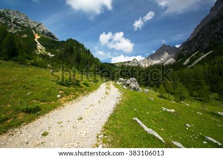 high alpine road. - stock photo