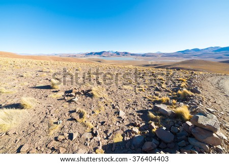High altitude barren highlands of the Andes, among the most important travel destination in Bolivia. Glowing grass at sunset in the foreground with majestic volcano range in the background. - stock photo