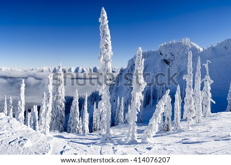 High altitude winter landscape in the Canadian rockies, snow covered ground and trees with a cloud inversion lower down the slope, clear blue sky. - stock photo
