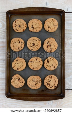 High angle shot of a dozen chocolate chip cookies on a metal baking sheet. Vertical format on a rustic white kitchen table.  - stock photo
