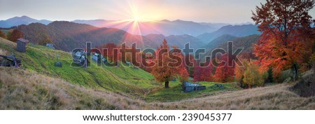 High in the mountains located Gutsulschiny tract with ancient village of shepherds, where shepherds live in the summer, cows and horses, and there is no one in the fall, only gold slopes forests  - stock photo