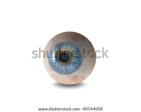 High quality 3d eyeball illustration - stock photo