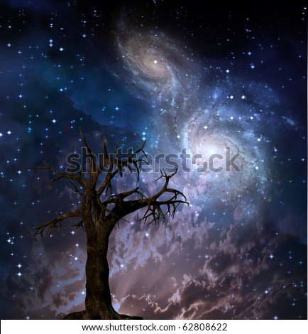 High Resolution Celestial Tree - stock photo