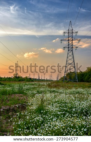 High voltage power line in flower meadow over sunset sky - stock photo
