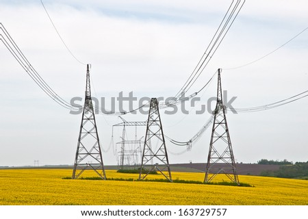 High-voltage power line on the background of a flowering field - stock photo