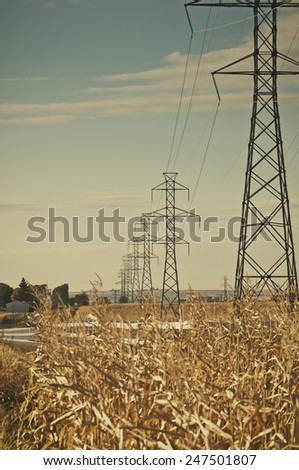 High voltage power lines on metal towers recede into the distance through rural cornfields. Retro instagram look. - stock photo