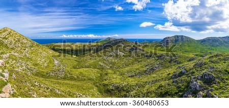 Highlands near the coast. Typical landscape of Mallorca. Grass, hills and olive trees. - stock photo
