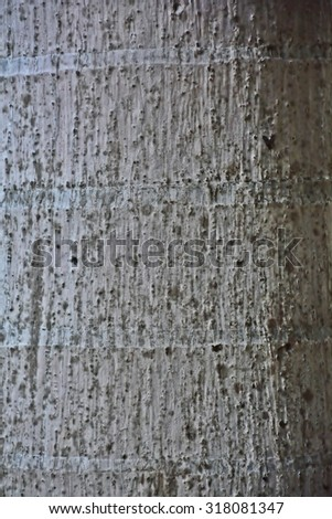 Highly detailed tree bark texture - stock photo