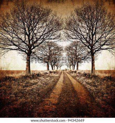 highly manipulated, textured and toned image of a winter farm track through an avenue of leafless trees to give a vintage, atmospheric appearance. - stock photo