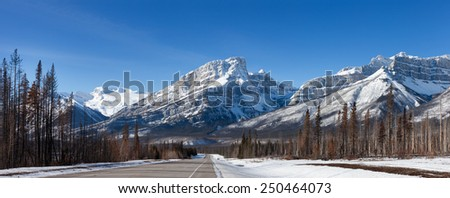 Highway, Burned Forest and Snow Mountains in Canadian Rockies - stock photo