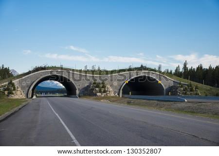 Highway crossing bridge for animals, Banff National Park, Canada - stock photo