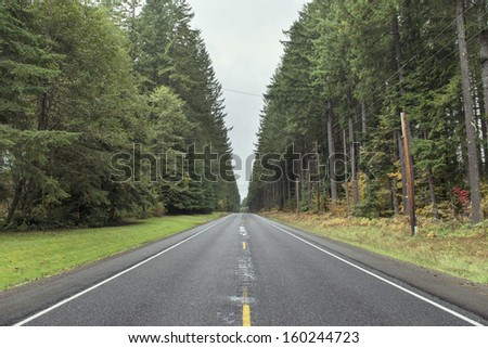 Highway in the forest - stock photo