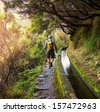Hike in Madeira - stock photo