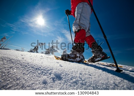 Hiker in winter mountains snowshoing - stock photo