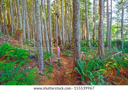 Hiker on the Tex Lyon Trail in Port Hardy, British Columbia - stock photo
