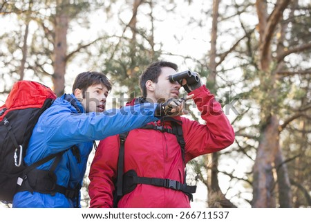 Hiker using binoculars while friend showing him something in forest - stock photo