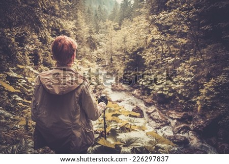 Hiker with hiking poles looking at small mouton river in a forest  - stock photo