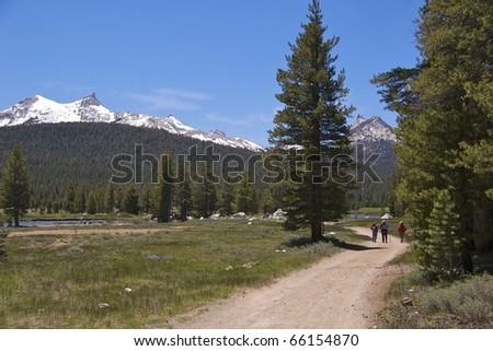 Hikers on Soda Springs Trail, Yosemite National Park, CA - stock photo