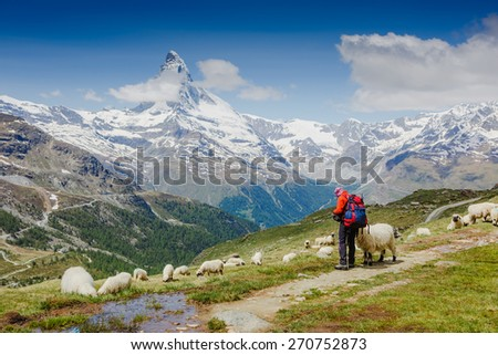 hikers triail near Matterhorn. Swiss Alps - stock photo