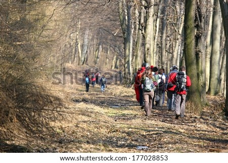 Hikers with backpacks, back view  - stock photo