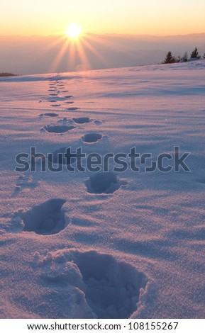 hiking in the winter - stock photo