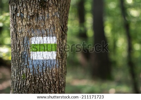 hiking sign in the forest - stock photo