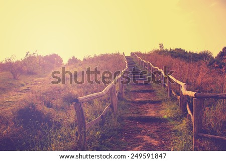 Hiking Trail in Autumn with a retro vintage instagram filter effect - stock photo