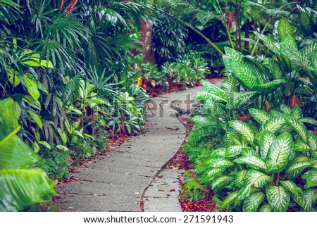 Hiking Trail In The Singapore Zoo. Beautiful nature - stock photo