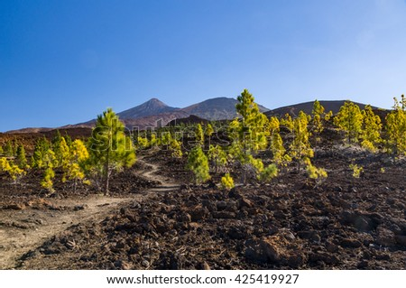 Hiking trail leading through arid volcanic landscapes, El Teide and Pico Viejo peaks on background - stock photo