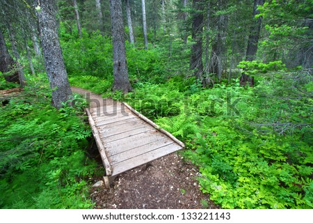 Hiking trail winds through the Two Medicine Area of Glacier National Park - stock photo