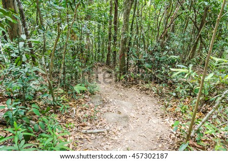 Hiking trails on the mountain. - stock photo