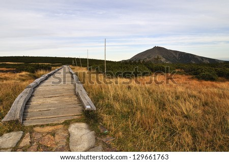 Hill Snezka and wood path in the national park Krkonose - stock photo