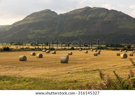 Hills, fields and hay bails. - stock photo