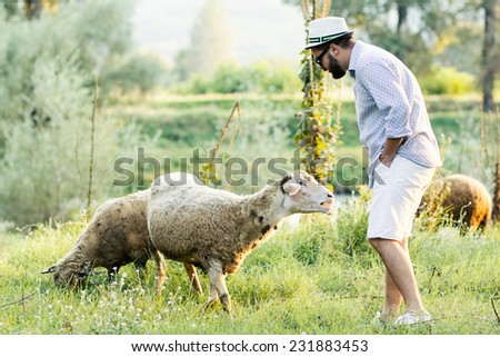 Hipster talking to a sheep on sunny day - stock photo