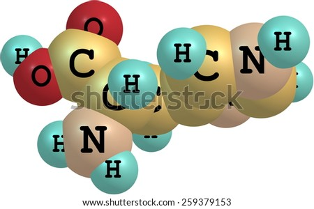 Histidine (His) is an amino acid with an imidazole functional group. It is one of the 23 proteinogenic amino acids - stock photo